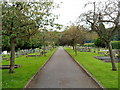 ST7598 : Path through Dursley Town Cemetery by John Grayson