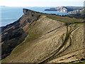 SY8879 : Gad Cliff viewed from Tyneham Cap : Week 6