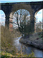 SJ5694 : Viaduct over Sankey Brook by David Dixon