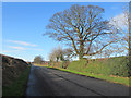NU1132 : Looking north along South Road, Belford by Graham Robson