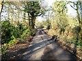 SU8968 : Bog Lane by Alex McGregor