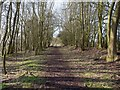 SP1158 : Trackbed of dismantled railway by David P Howard