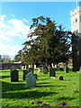 TQ0486 : St Mary the Virgin, Denham, Graveyard by Alexander P Kapp
