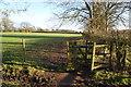 SJ8382 : Path to Wilmslow by Bill Boaden