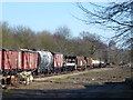 TL1597 : Railway wagons in Ferry Meadows Station, Peterborough by Richard Humphrey