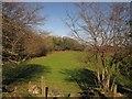 SX7187 : Woodland edge near Yellam by Derek Harper