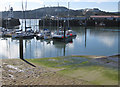 TA0488 : Old harbour, Scarborough by Pauline Eccles
