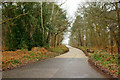 TQ0658 : Elm Lane, Wisley, Surrey by Peter Trimming
