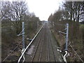 SJ6496 : Railway running east from Broseley Bridge by JThomas