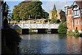 TQ5946 : The Big Bridge by N Chadwick