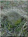 NS3974 : Dumbarton Rock: War Department boundary stone no. 4 by Lairich Rig