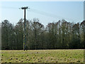 TL7117 : Power pole near Rectory Lane by Robin Webster