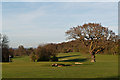 TQ4462 : High Elms Golf Course by Ian Capper