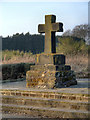 SJ4990 : The Ancient Cross on Mill Lane by David Dixon