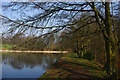 SP0583 : The dam at Edgbaston Pool by Phil Champion