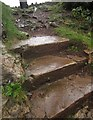 SX9065 : Steps by St Michael's chapel, Torquay by Derek Harper