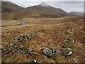 NH1120 : Ruin, Glen Affric by Richard Webb