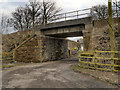 SJ4786 : Railway Bridge over Garnett's Lane by David Dixon