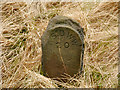 SE0103 : Water Works Boundary Stone by David Dixon