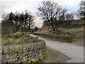 SE0204 : Binn Green by David Dixon