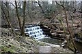 SJ9552 : Weir in Deep Hayes Country Park by Graham Hogg