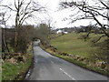 NY4422 : The road to Watermillock church by David Purchase