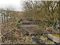 SD7907 : Derelict Bridge over Bealey's Goit by David Dixon