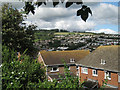 SX9273 : The roofs of Headway Rise, Teignmouth by Robin Stott
