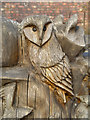 SJ7387 : Owl Carving, Dunham Massey by David Dixon