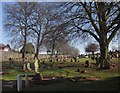 SX9066 : Torquay Cemetery by Derek Harper