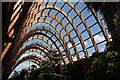 SK3587 : Winter Gardens, Sheffield by Dave Pickersgill