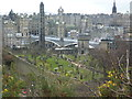 NT2674 : Old Calton Burying Ground from the Calton Hill by kim traynor