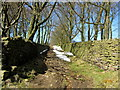 SE0138 : Walled Bridleway leading to Broad Head Lane by Chris Heaton