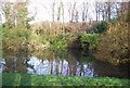 TQ0244 : Pond near Upper Lostiford House by Nigel Chadwick