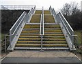 SE3903 : Steps to Wombwell by Steve  Fareham