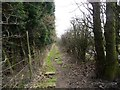 SE3440 : Footpath from Brandon Lane to Brandon Crescent by Christine Johnstone