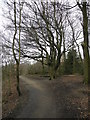 SD9501 : Knott Hill Local Nature Reserve by John Topping