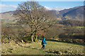 NY1423 : Above Thackthwaite by Tom Richardson