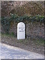 TG0603 : Milestone on the B1108 Station Road by Adrian Cable