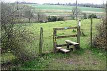SP8925 : Footpath to Hop Gardens by Philip Jeffrey