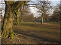 SE3055 : West Park Stray, Harrogate by Derek Harper
