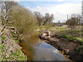 SJ7585 : River Bollin by David Dixon