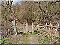 SJ7485 : Stile on the Bollin Valley Way by David Dixon