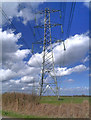 SJ7184 : Pylons Across the Fields by David Dixon