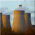 SK4929 : Ratcliffe cooling towers : Week 16