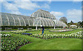 TQ1876 : Palm House and Parterre by Anne Burgess