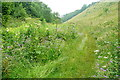 SK2061 : Bridleway in Gratton Dale by Graham Horn