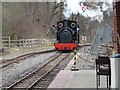 SJ8248 : Stanhope, Apedale Valley Light Railway by Christine Johnstone