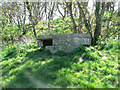 TF9643 : WW1 pillbox beside the Norfolk Coast Path, Stiffkey by Evelyn Simak