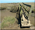 TF9744 : Five bridges to the dunes, Stiffkey saltmarsh by Evelyn Simak